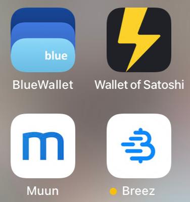 Lightning Wallet